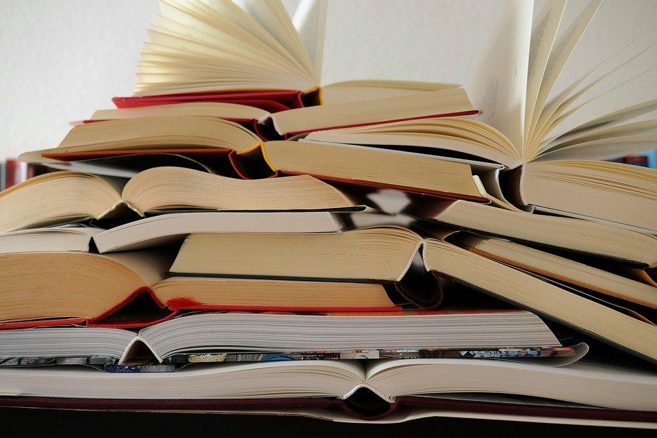 what to do in San Sebastian - reading